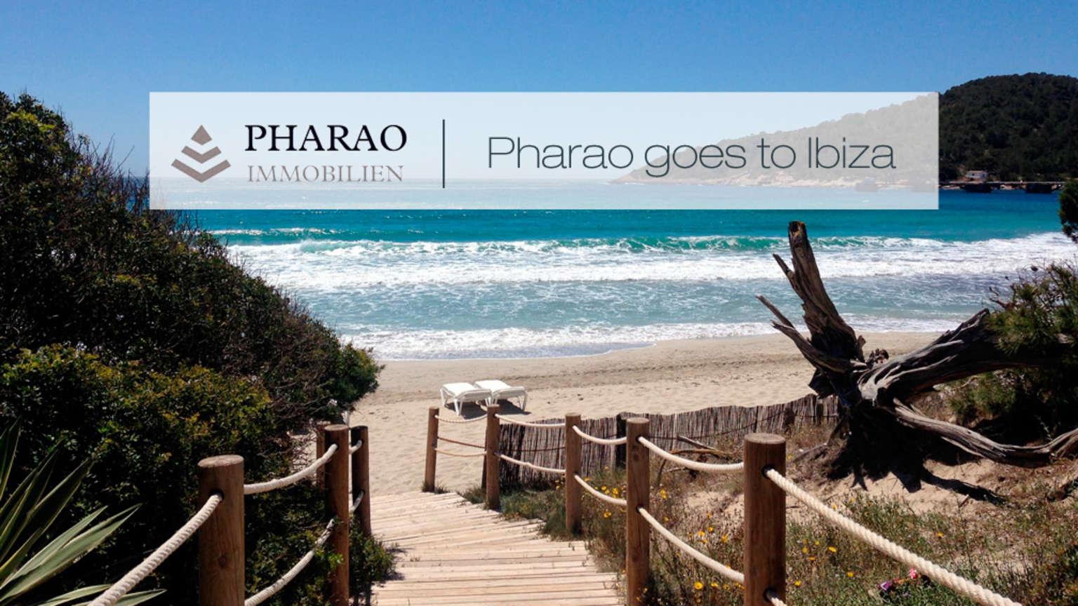 Pharao Immobilien vergrößert sein Team und eröffnet eine Niederlassung auf Ibiza